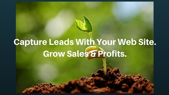 Capture Leads With Your Web Site and Grow Sales & Profits.