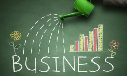 Capital One Small Business Growth Index Reveals Crucial Info About Small Business Environment